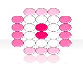 Organization Matrix 2.4.3.25