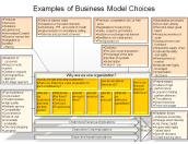 Examples of Business Model Choices