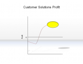 Customer Solutions Profit