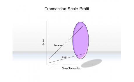 Transaction Scale Profit