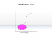 New Product Profit
