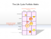 The Life Cycle Portfolio Matrix
