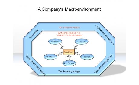 A Company's Macroenvironment