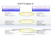 SWOT Analysis III