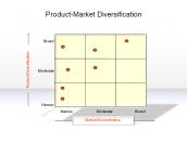 Product-Market Diversification