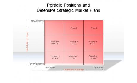 Portfolio Positions and Defensive Strategic Market Plans