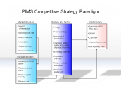 PIMS Competitive Strategy Paradigm