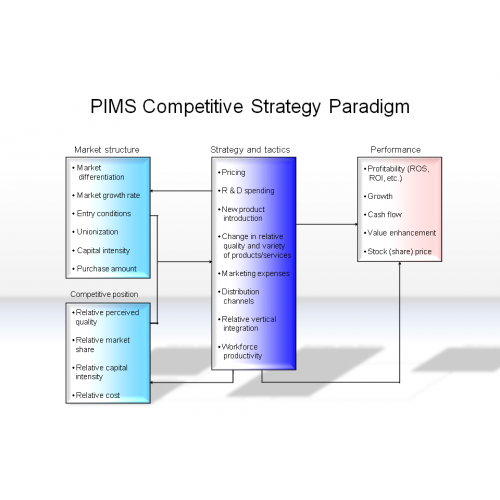 Competitive Pricing Strategy: PIMS Competitive Strategy Paradigm