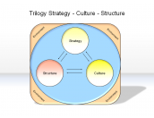 Trilogy Strategy - Culture - Structure