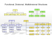 Functional, Divisional, Multidivisional Structures