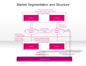 Market Segmentation and Structure