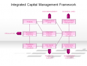 Integrated Capital Management Framework
