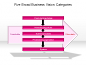 Five Broad Business Vision Categories