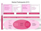 Market Participants-2015