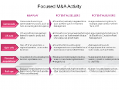Focused M&A Activity