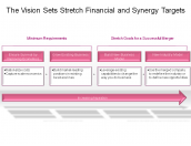 The Vision Sets Stretch Financial and Synergy Targets