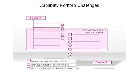 Capability Portfolio Challenges