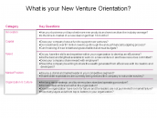 What is your New Venture Orientation?