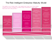 The Risk Intelligent Enterprise Maturity Model