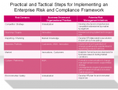 Practical and Tactical Steps for Implementing an Enterprise Risk and Compliance Framework