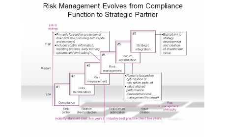 Risk Management Evolves from Compliance Function to Strategic Partner