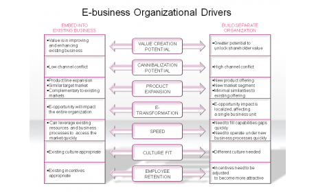 E-business Organizational Drivers