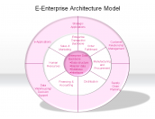 E-Enterprise Architecture Model