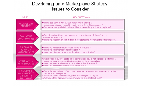 Developing an e-Marketplace Strategy: Issues to Consider