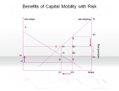 Benefits of Capital Mobility with Risk