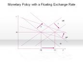 Monetary Policy with a Floating Exchange Rate