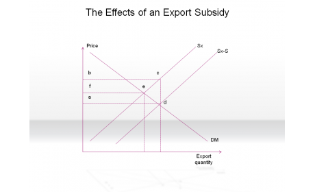 The Effects of an Export Subsidy