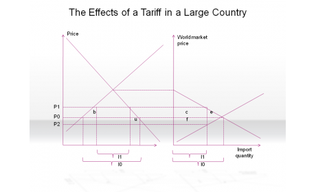 The Effects of a Tariff in a Large Country