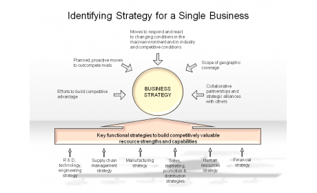 Identifying Strategy for a Single Business
