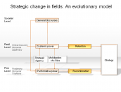 Strategic change in fields: An evolutionary model
