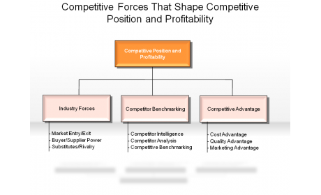 Competitive Forces That Shape Competitive Position and Profitability