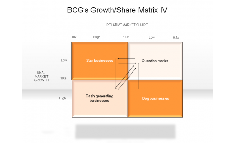 BCG's Growth/Share Matrix IV