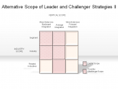 Alternative Scope of Leader and Challenger Strategies II