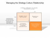 Managing the Strategy-Culture Relationship