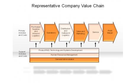 Representative Company Value Chain