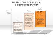 The Three Strategy Horizons for Sustaining Rapid Growth