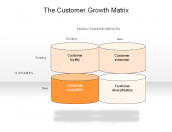 The Customer Growth Matrix