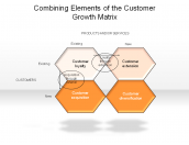 Combining Elements of the Customer Growth Matrix