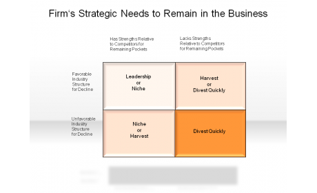 Firm's Strategic Needs to Remain in the Business