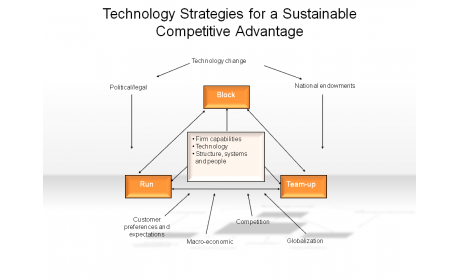 Technology Strategies for a Sustainable Competitive Advantage