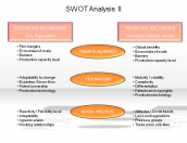 SWOT Analysis II