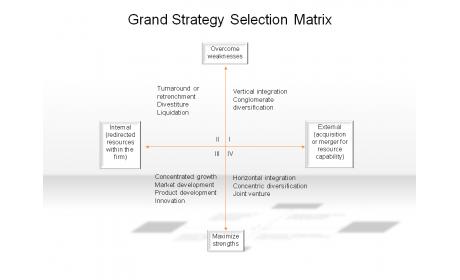 Grand Strategy Selection Matrix