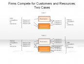 Firms Compete for Customers and Resources