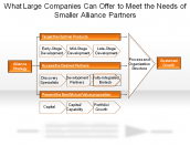 What Large Companies Can Offer to Meet the Needs of Smaller Alliance Partners