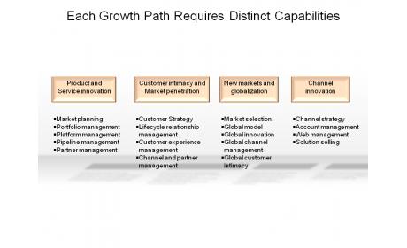Each Growth Path Requires Distinct Capabilities