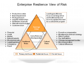 Enterprise Resilience View of Risk